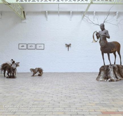 Screenshot of Julien Salaud, Histoires animales - pointcontemporain