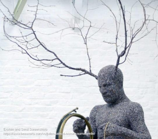 Screenshot of Julien Salaud _ histoire (sur)naturelle _ Beaux Arts